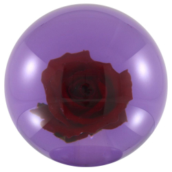 Bowlingball - Bowlingkugel - Clearball - Red Rose